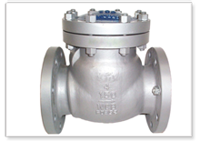 Check Valves manufacturers