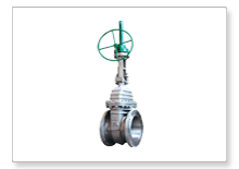 SS wafer butterfly valve manufacturers