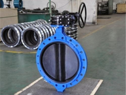 Rubber Lined Butterfly Valves manufacturers